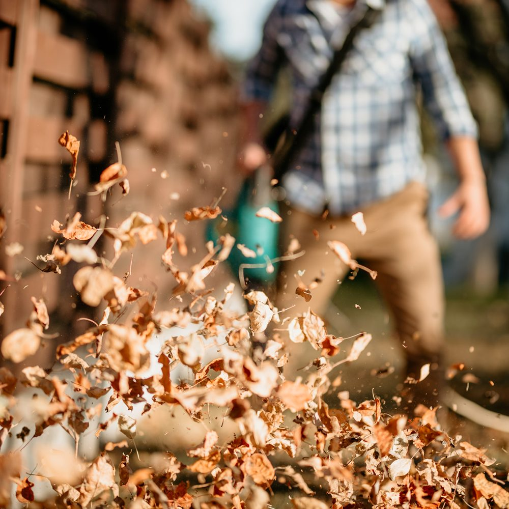 leaf blowing